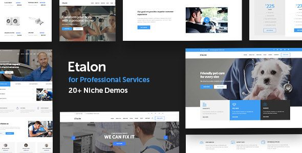 Etalon v1.2 - Multi-Concept Theme For Professional Services