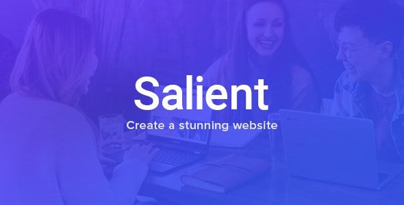 Salient v11 - Responsive Multi-Purpose Theme